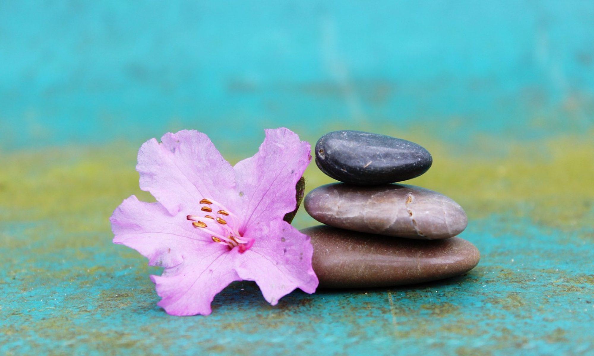 Harmonisation du corps et de l'esprit pour un mieux-être